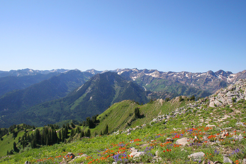 Kessler Peak and ridge between Big and Little Cottonwood Canyons, viewed from Gobblers Knob, the tallest peak in Big Cottonwood Canyon.