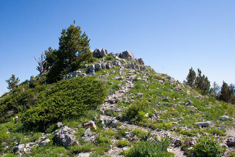 Final summit trail, Gobblers Knob, Big Cottonwood Canyon, Utah.