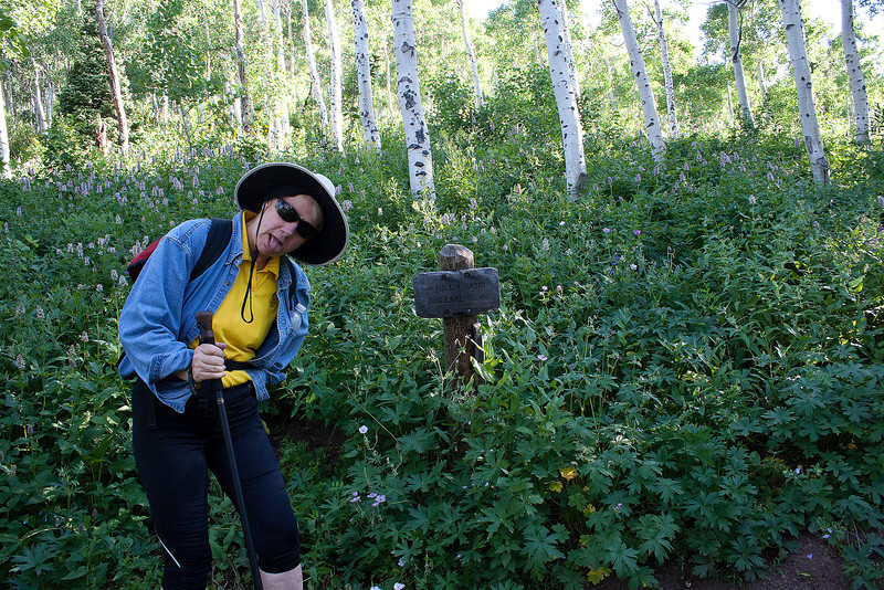 Waist deep wildflowers, surround the marker at the Desolation trail marker. Carrie is noticing the distance logged.