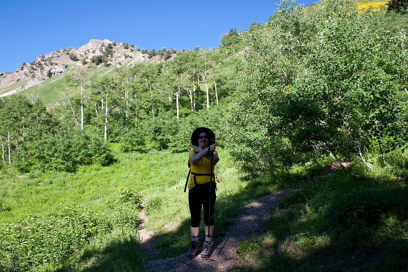 """The faint trail, lookers left, goes down Mill A Basin, back to the """"S"""" curves in Big Cottonwood, not to to what looks like the pass above. The pass is to the lookers right, Northeast. I had the map out here, before I looked up to see the pass up the right fork."""