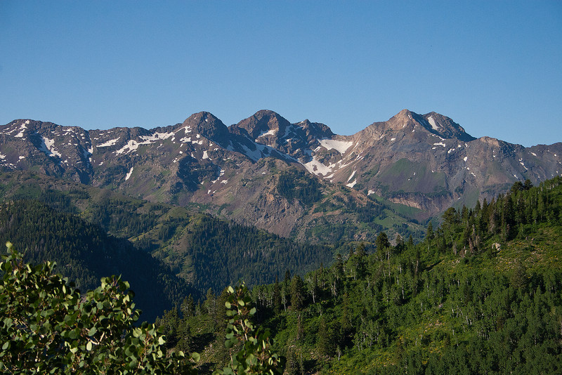 From Butler Fork Trail In Upper Big Cottonwood Canyon, the view across to The Twin Peaks, Sunrise, and Dromedary Peaks looking viewers  right to left, ( also known as The Triple Traverse).