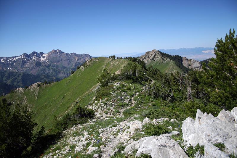 Upper ridge view toward Mt. Raymond from the Gopbblers Knob upper ridge.
