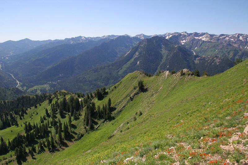 View of Little Cottonwood Ridge.