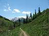 Mill D trail, Big Cottonwood Canyon. On the way down from Dog Lake, late June.