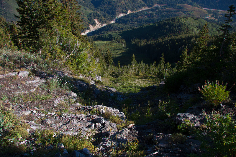 Looking down Gods Lawnmower avalanche path toward Butler Fork.