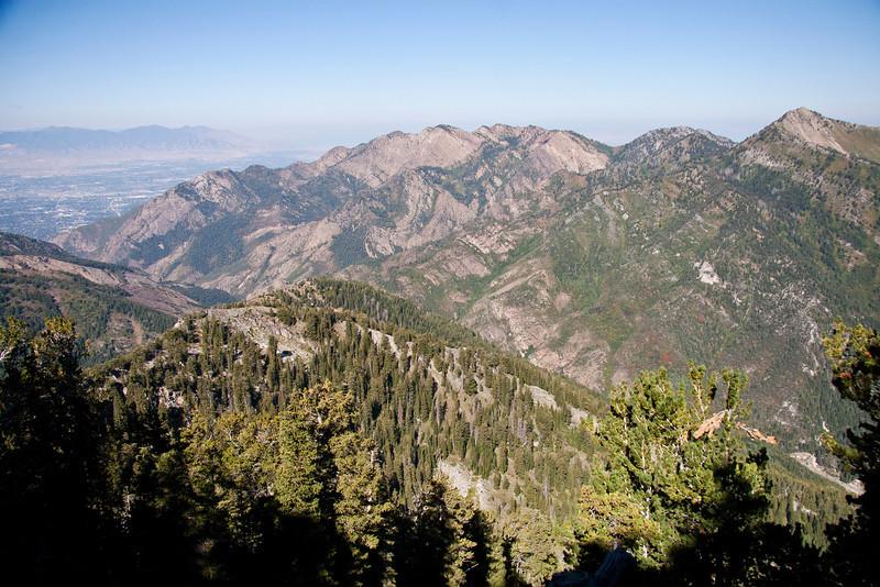 Wildcat Ridge, ( Mount Olympus Wilderness area), from near the ridge.