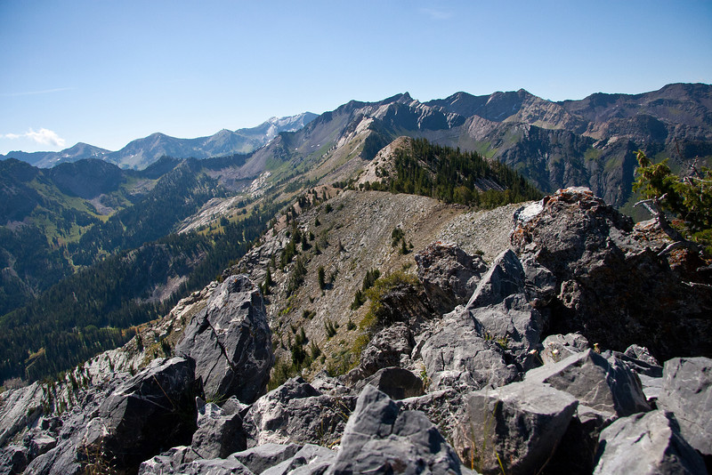 From Kessler Peak.