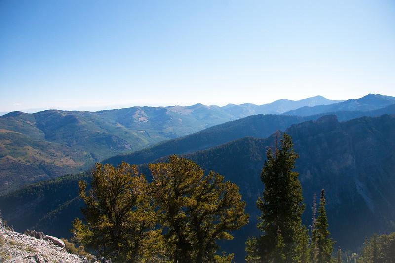 From ridge, toward upper BCC across Cardiff Fork.