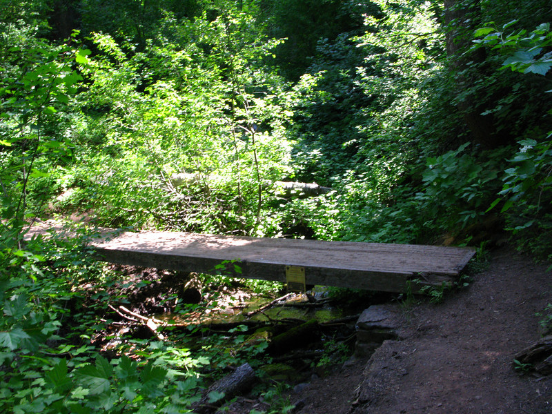 Forest Service built bridge,,