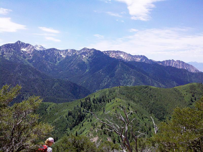 Looking Southwest to Big Cottonwood Ridge,,,,,,