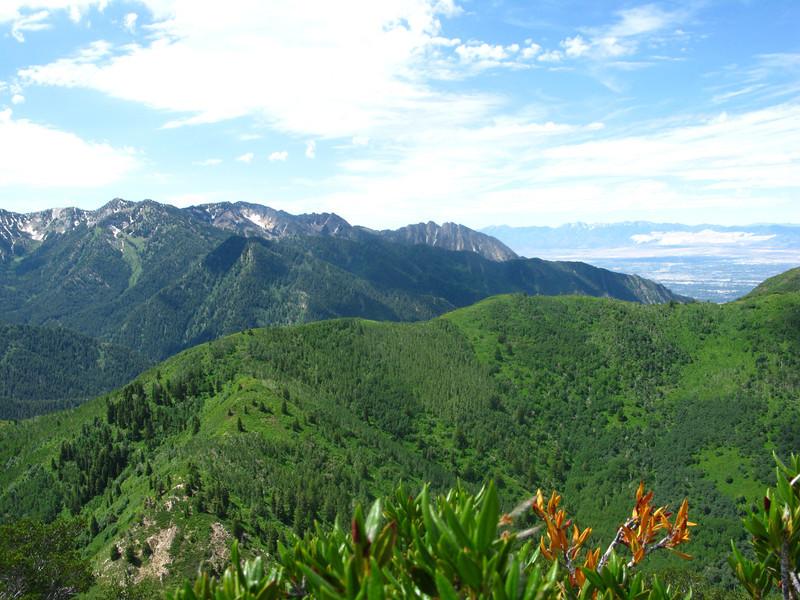 North east ridgeline of Millcreek, looking South  toward Mt. Olympus and SL valley..