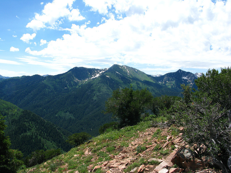 Gobblers Knob viewed from Mt. Aire Peak