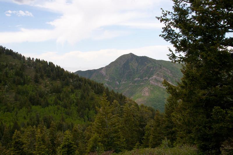 Grandeur Peak across Millcreek Canyon from upper Thayne Canyon.