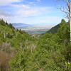Upper trail, finally the view opens up after about 2.7 miles just before the meadow. Looking back down the trail.