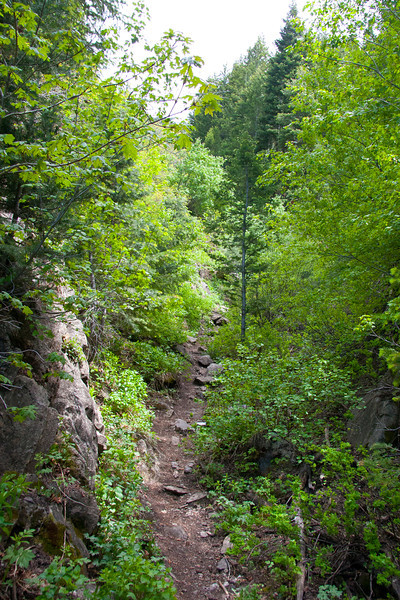 Thaynes Canyon, is in places steep and follows an obvious gully.