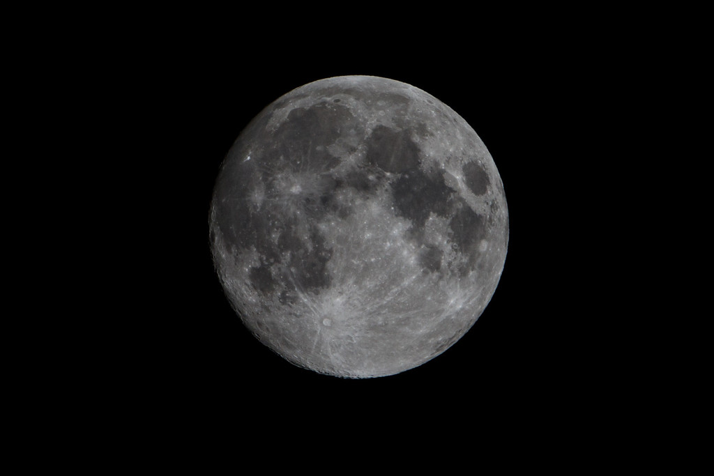 Testing out my new Teleconverter. 70-200 2.8 IS II with 2x III TC.