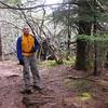 Mark on the Summit of Silvermine Bald