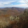 Views from Tanasee Bald