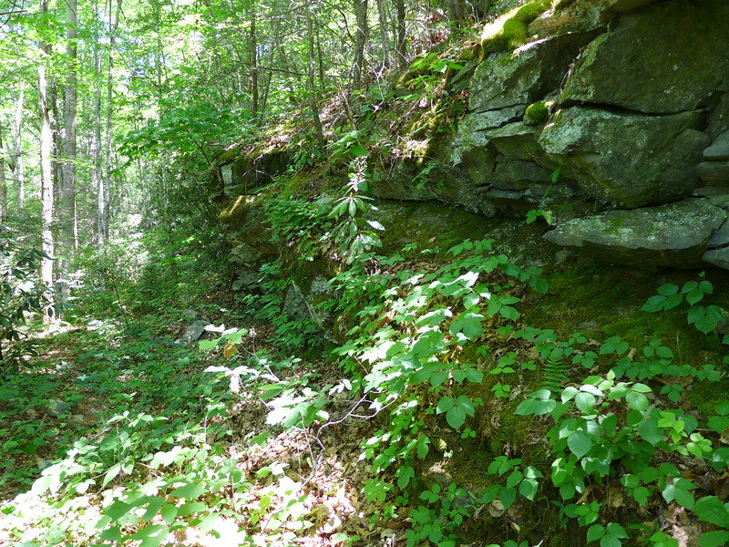 One of many rock walls