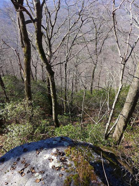 Looking down from Little Sassafras Peak.