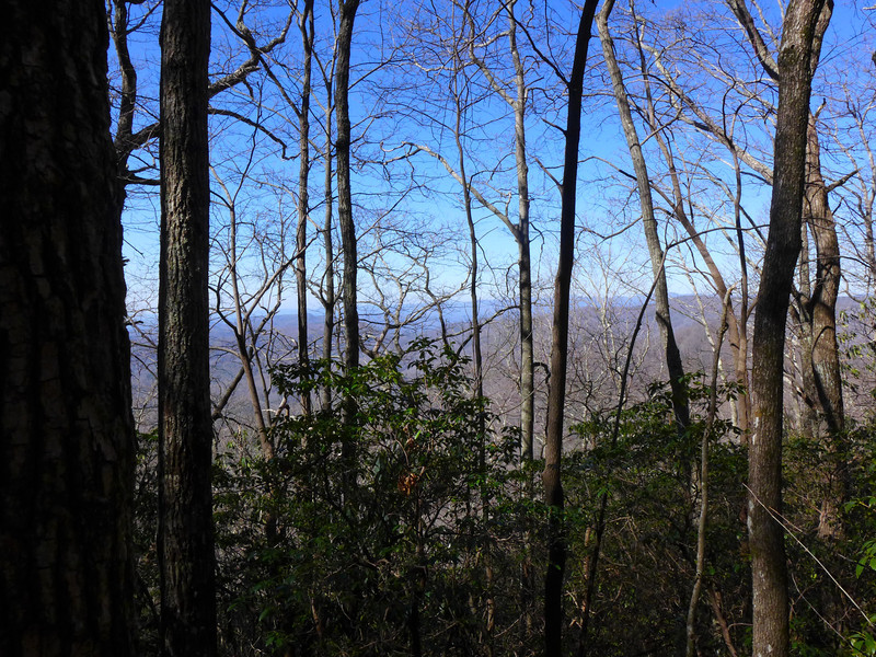 """View from the edge of the """"shelf"""" that lies in the gap to the NW of Little Sassafras Peak."""
