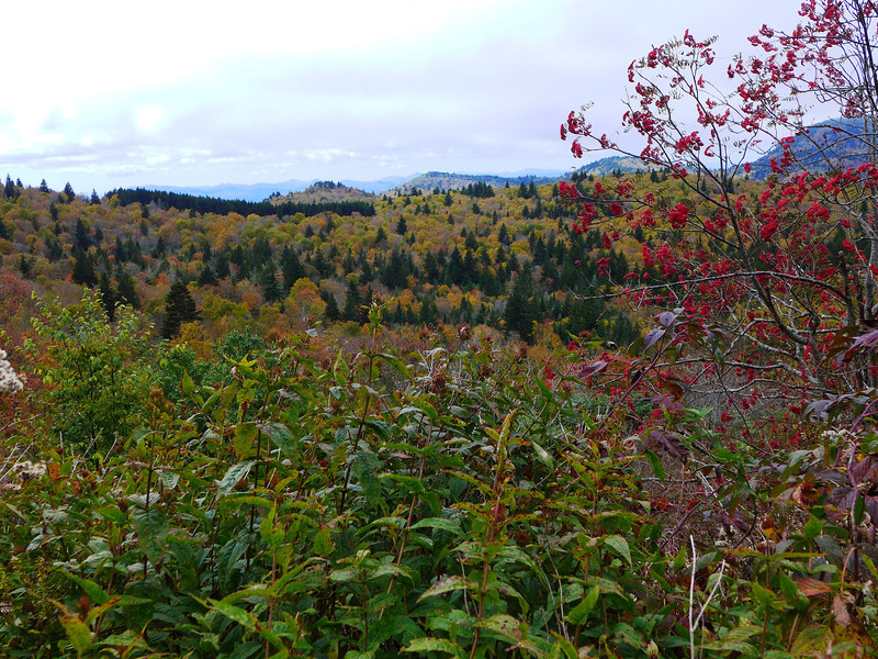 <h1>View from Little Sam Trail</h1>