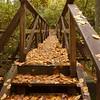 FHT Bridge over Bearcamp Creek