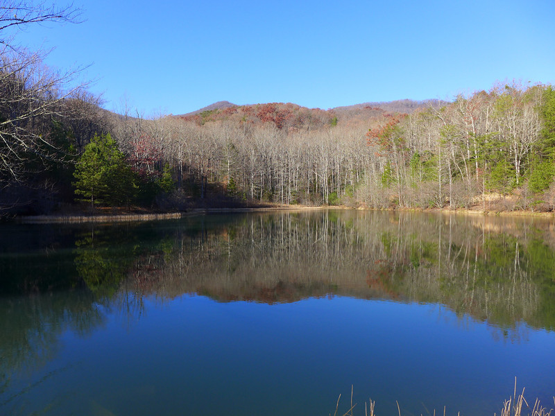 <h1>Small Pond</h1>...off Burgess Road where we began our second hike.