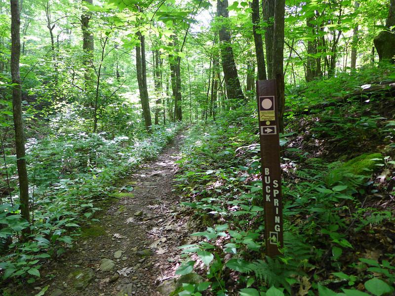 MTS Trail Turn off