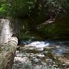 The upstream side