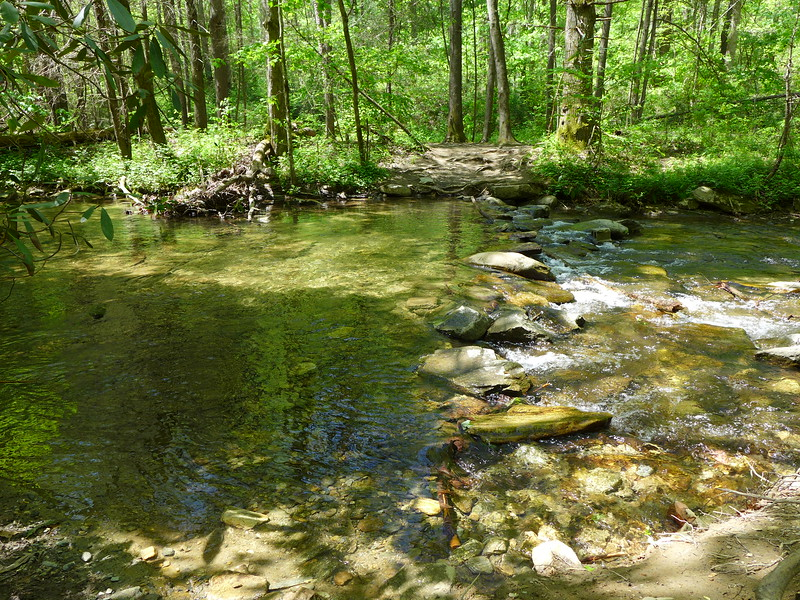 This crossing of Catawba Creek comes very early in the hike.