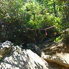 "This spot of the trail to the Upper Falls is right at the top of the ""rope"" section, and the trail to the falls continues to the left, around and behind the big rock you see in the foreground.<br /> <br /> However, there is a wide trail that heads to the right and uphill, and unless you know to LOOK for the turn by the rock, many folks mistakenly head up the trail to the right.<br /> <br /> Recently someone roped off this ""wrong"" trail with some marking tape, which hopefully will prevent a lot of ""wrong turns""."