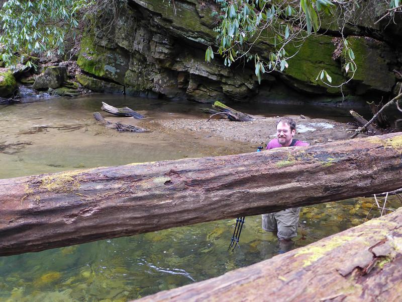 <h1>Jack</h1>...wading through Catheys Creek.