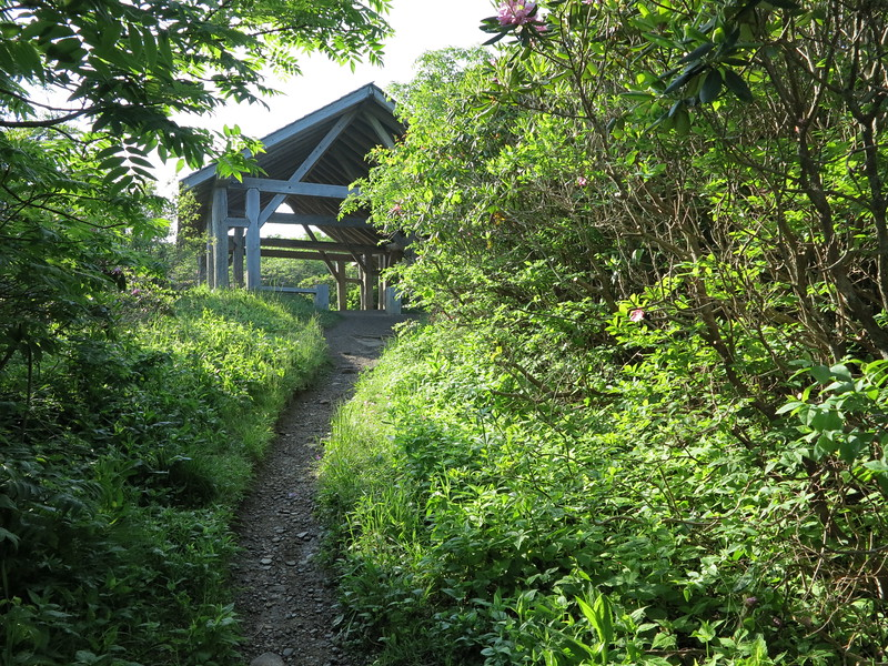 Trail Shelter