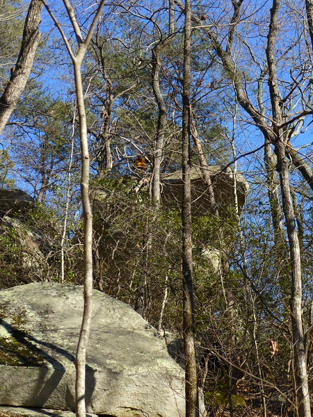 Mark climbed to the top of one of the boulder sections.   You can just barely make out where he is (look for the orange vest).