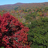"""<h1>A splash of color</h1>....at Graveyard Fields, with the second falls in the background.   Compare this photo <b><u><a href=""""http://nc-hiker.smugmug.com/HikingTrips-6/Autumn-Scenes-from-Black/32605202_WqmrSZ#!i=2833530433&k=d8mGnFK"""">to one a week later</a></u></b> ... lots more color change!"""
