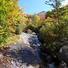 <h1>Cascade, Fall Color, and Sam Knob</h1>