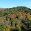 <h1>Fall Color</h1>....at Graveyard Fields.