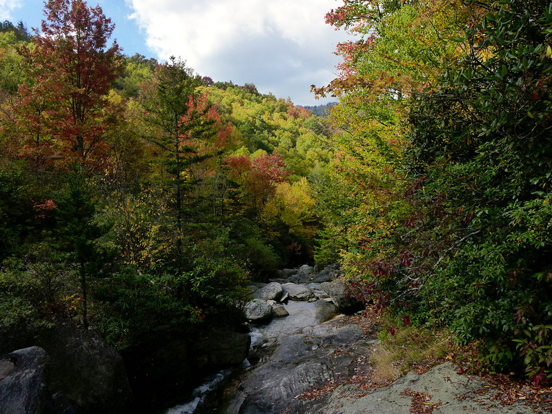 <h1>Looking downstream</h1>View downstream of Flat Laurel Creek from around the 4758 foot elevation contour line.  The previous photo shows the view upstream from this same spot.