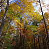 <h1>More Fall Color</h1>