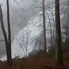 Rain engorged Rainbow Falls