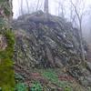 Huge, lichen covered boulder