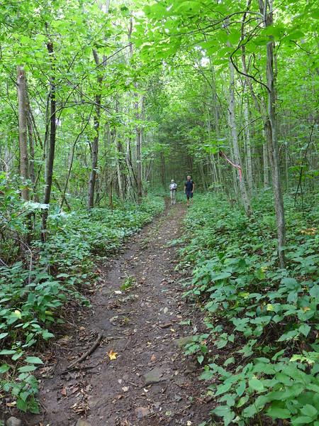 Along the Trombatore Trail