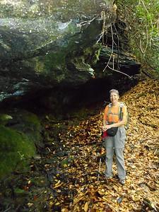 Along Little Green Creek
