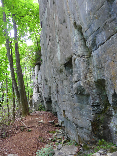 These vertical rock walls were located just beyond the unnamed waterfall.