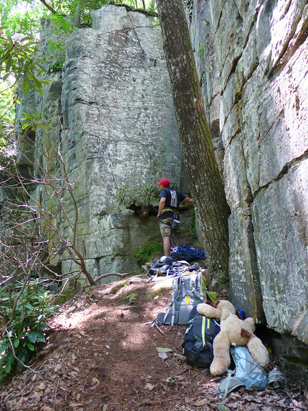 This rock climber was here with his wife, young son, and 2 dogs.  He and his wife were rock climbing, and the boy and dogs amused themselves along the wall.   What first caught my eye was the huge stuffed animal lying over the pack on the ground!