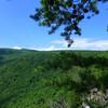 Pond Ridge