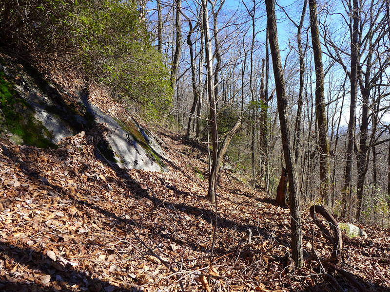 <h1>Some of the bare rock face</h1>...that lies along the Raven Cliff Ridgeline.
