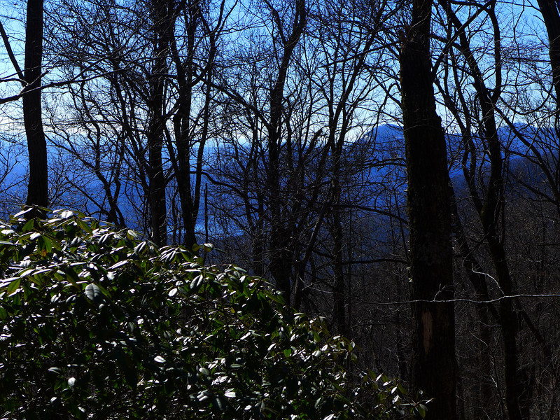 <h1>View to the SW</h1>...from Raven Cliff Ridgeline.  You can clearly see Table Rock and Table Rock Lake through the trees.