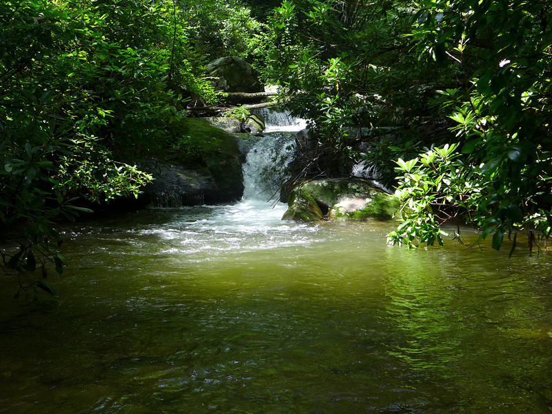 <h1>Middle Saluda</h1> ... as it empties into a pool.  Seen from just before the turn off to Rainbow Falls Trail.